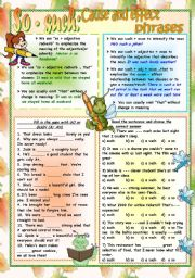 English Worksheet: So - Such: Cause - Effect Phrases