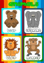 Animal flashcards (1)