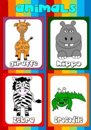 Animal flashcards (3)