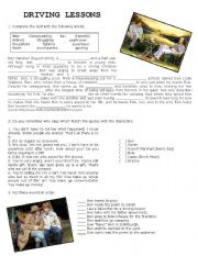 English Worksheets: Drving Lessons - Movie