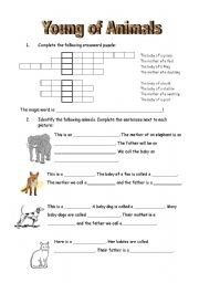 English Worksheets: Young of animals