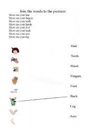 English Worksheet: Show me your body parts
