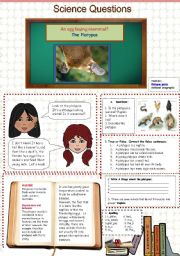 English Worksheet: An Egg Laying Mammal? - Science Questions 18/20