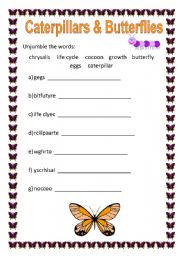 Home > Other printables worksheets > Unjumble the Words - Butterflies