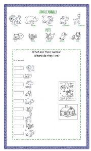 English Worksheets: JUNGLE ANIMALS AND PETS