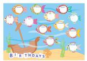 English Worksheet: Birthdays, weather and seasons