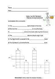English Worksheet: Skeleton and Muscles