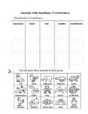 English Worksheets: Animals with backbone
