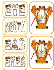 English Worksheet: PARTS OF THE BODY- cards  1/9