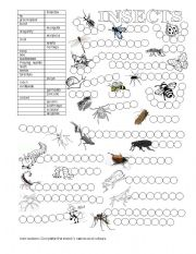 English Worksheets: ANIMALS (INSECTS)