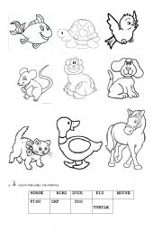 English Worksheets: Let�s label the animals