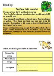 English Worksheet: PUMA - animal reading