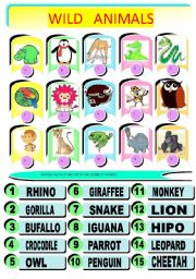 English Worksheet: JUNGLE ANIMALS