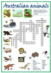 English Worksheet: Australian animals crossword
