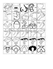 English worksheet: body parts cartoons