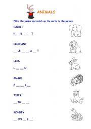 English Worksheets: Animals Easy