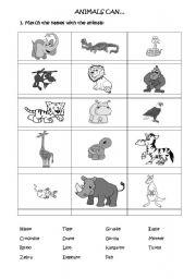 English worksheet: JUNGLE ANIMALS