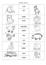 English Worksheets: Exercises for animals