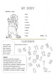 English Worksheets: MY BODY- NUMBERS