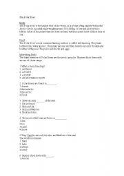 English Worksheet: Comprehension/ polar bear