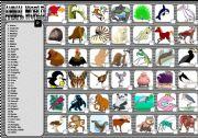 English Worksheets: ANIMALS 4/6