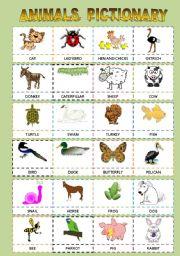 English Worksheet: ANIMALS PICTIONARY