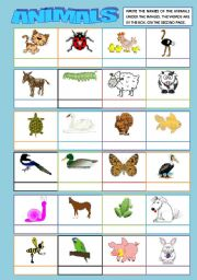 English Worksheets: ANIMALS MATCHING (words 2nd. page)