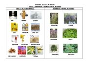 English Worksheet: THINGS TO EAT & DRINK. SPICES, CONDIMENTS & AROMATIC HERBS