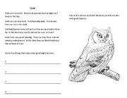 english worksheets owl vocab. Black Bedroom Furniture Sets. Home Design Ideas