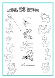English Worksheet: animal and actions