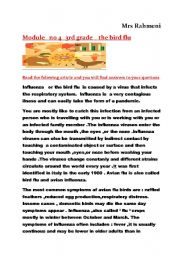 English Worksheet: the bird flu   3RD grade