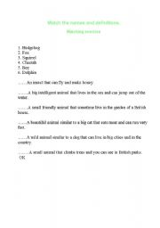 English Worksheets: exercise
