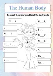 the human body - ESL worksheet by beblyna