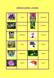 Spring flowers names gallery flower decoration ideas english worksheets spring flowers domino english worksheet spring flowers domino mightylinksfo mightylinksfo