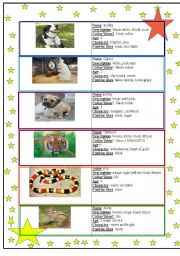 English Worksheets: find your lost pet