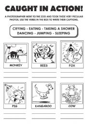 English Worksheets: Caught in Action