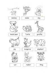 English Worksheets: Animals1