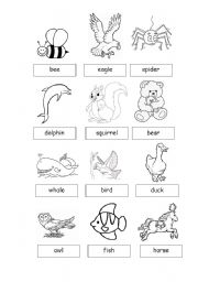 English Worksheets: Animals2