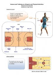 English Worksheet: B-ball ( Basketball sport)