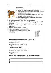 English Worksheets: Animal facts and verb can