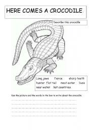 English Worksheets: here comes a crocodile