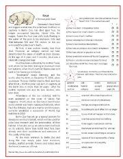 English Worksheet: Knut - a famous polar bear