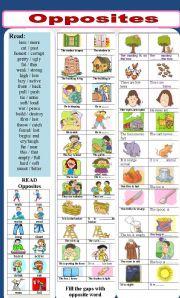 English Worksheets: opposites