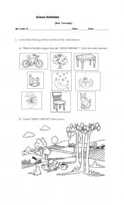 English Worksheet: Living Things and Inert Objects