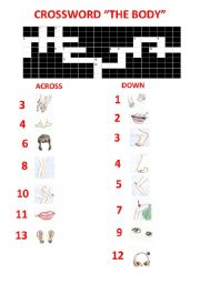 English Worksheets: crossword body