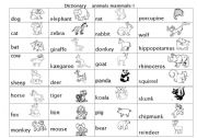 English Worksheets: animal (mammals) pictures