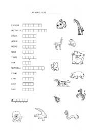 English Worksheets: Animals from Africa