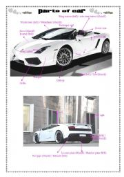 English Worksheet: Parts of car