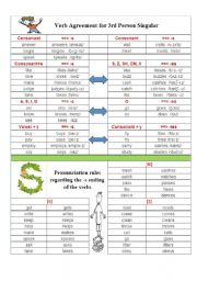 Verb Agreement for 3rd Person Singular