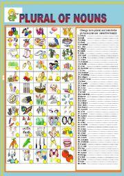 English Worksheet: PLURAL  OF NOUN